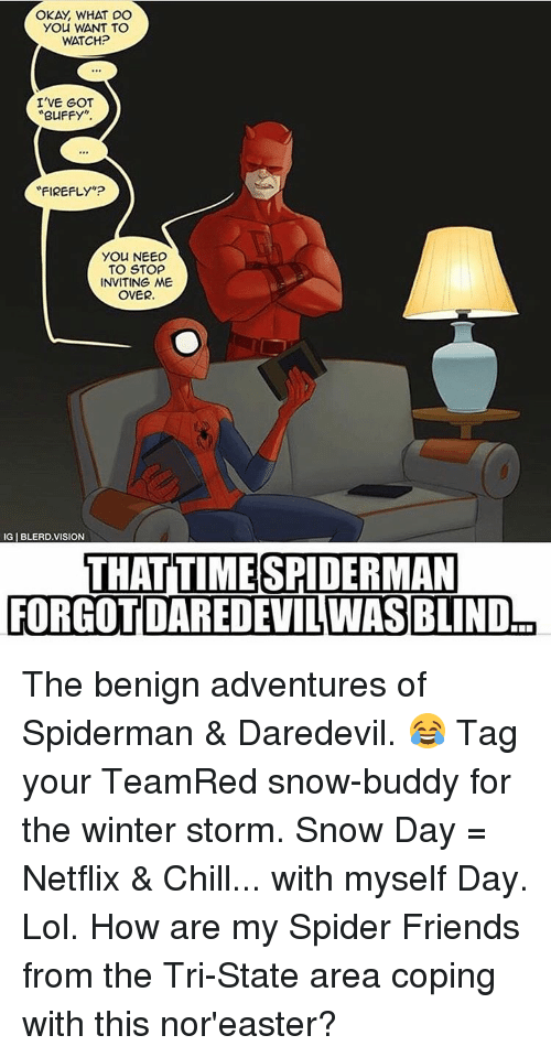 "Memes, Daredevil, and 🤖: OKAY WHAT DO  YOU WANT TO  WATCH?  I'VE GOT  BUFFY  FIREFLY""?  You NEED  TO STOP  INVITING ME  OVER.  IGIBLERDVISION  THAT TIME SPIDERMAN  FORGOT DAREDEVILWAS BLIND The benign adventures of Spiderman & Daredevil. 😂 Tag your TeamRed snow-buddy for the winter storm. Snow Day = Netflix & Chill... with myself Day. Lol. How are my Spider Friends from the Tri-State area coping with this nor'easter?"
