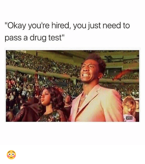 "Drugs, Weed, and Marijuana: ""Okay you're hired, you just need to  pass a drug test"" 😳"