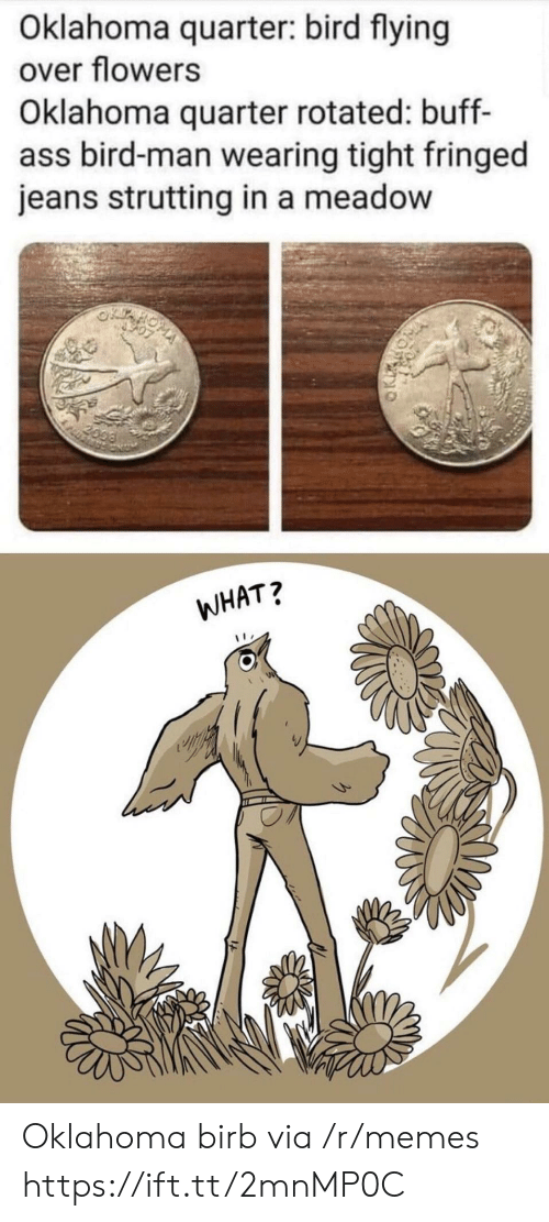 Oklahoma: Oklahoma quarter: bird flying  over flowers  Oklahoma quarter rotated: buff-  ass bird-man wearing tight fringed  jeans strutting in a meadow  2099  WHAT? Oklahoma birb via /r/memes https://ift.tt/2mnMP0C