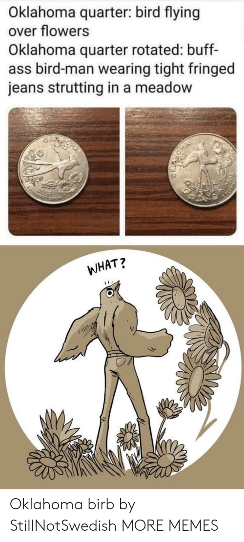 Oklahoma: Oklahoma quarter: bird flying  over flowers  Oklahoma quarter rotated: buff-  ass bird-man wearing tight fringed  jeans strutting in a meadow  2099  WHAT? Oklahoma birb by StillNotSwedish MORE MEMES