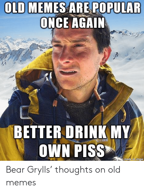 Memes, Bear, and Imgur: OLD MEMES ARE POPULAR  ONCE AGAIN  BETTER DRINK MY  OWN PISS  made on imgur Bear Grylls' thoughts on old memes