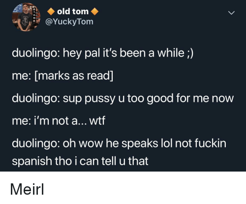 Lol, Pussy, and Spanish: old tom  YuckyTom  duolingo: hey pal it's been a while;)  me: [marks as read]  duolingo: sup pussy u too good for me novw  me: i'm not a... wtf  duolingo: oh wow he speaks lol not fuckin  spanish tho i can tell u that Meirl