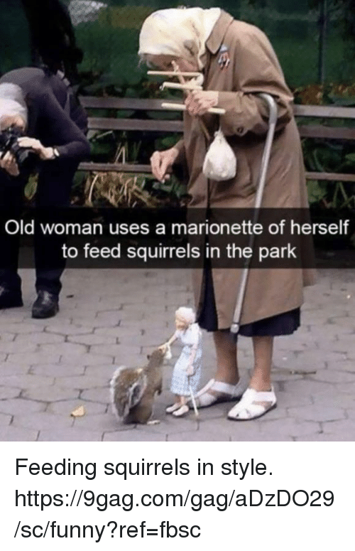 9gag, Dank, and Funny: Old woman uses a marionette of herself  to feed squirrels in the park Feeding squirrels in style.  https://9gag.com/gag/aDzDO29/sc/funny?ref=fbsc