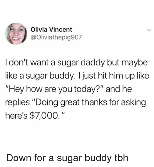 """Memes, Tbh, and Sugar: Olivia Vincent  @Oliviathepig907  I don't want a sugar daddy but maybe  like a sugar buddy. I just hit him up like  """"Hey how are you today?"""" and he  replies """"Doing great thanks for asking  here's $7,000."""" Down for a sugar buddy tbh"""