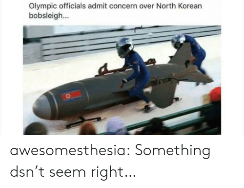 Tumblr, Blog, and Http: Olympic officials admit concern over North Korean  bobsleigh awesomesthesia:  Something dsn't seem right…