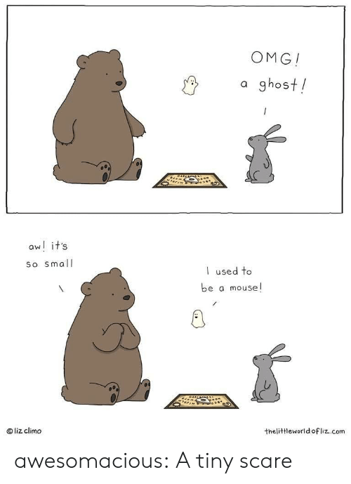 Omg, Scare, and Tumblr: OMG!  a ghost!  aw! it's  So small  used to  be a mouse!  liz climo  thelittleworld ofliz.com awesomacious:  A tiny scare