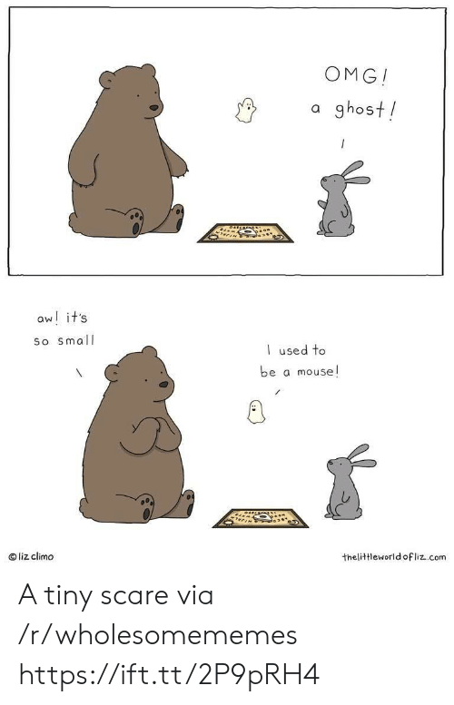 Mouse: OMG!  a ghost!  aw! it's  So small  used to  be a mouse!  liz climo  thelittleworld ofliz.com A tiny scare via /r/wholesomememes https://ift.tt/2P9pRH4