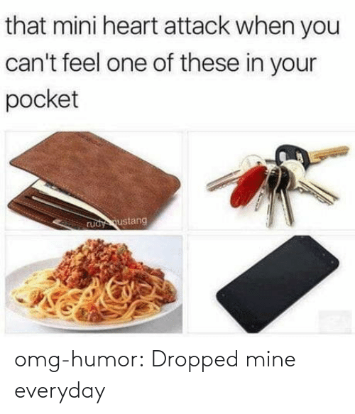 Blog: omg-humor:  Dropped mine everyday