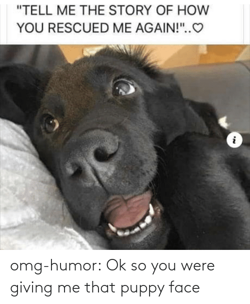 Blog: omg-humor:  Ok so you were giving me that puppy face