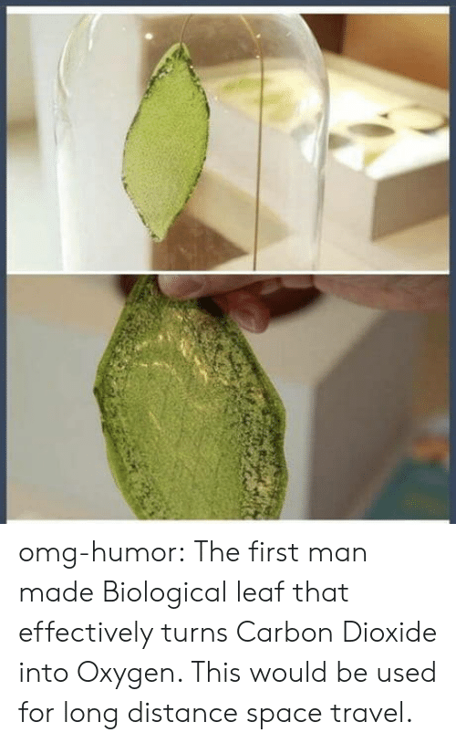 Omg, Tumblr, and Blog: omg-humor:  The first man made Biological leaf that effectively turns Carbon Dioxide into Oxygen. This would be used for long distance space travel.