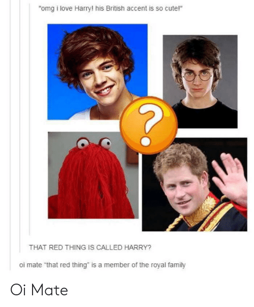 "Cute, Love, and Omg: omg i love Harry! his British accent is so cute!""  THAT RED THING IS CALLED HARRY?  oi mate ""that red thing"" is a member of the royal famiy Oi Mate"