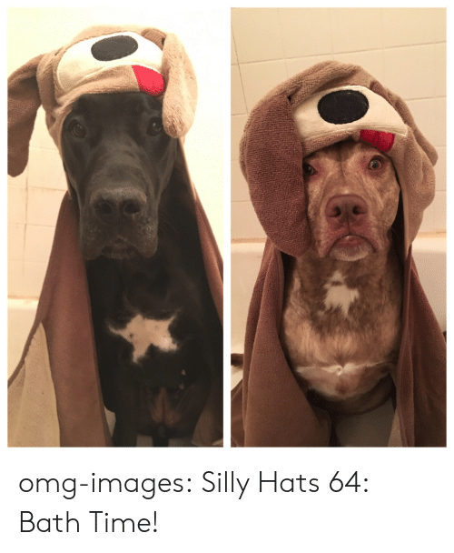 bath time: omg-images:  Silly Hats 64: Bath Time!