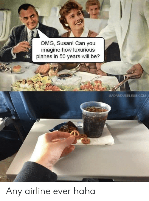 planes: OMG, Susan! Can you  imagine how luxurious  planes in 50 years will be?  SADANDUSELESS.cOM Any airline ever haha