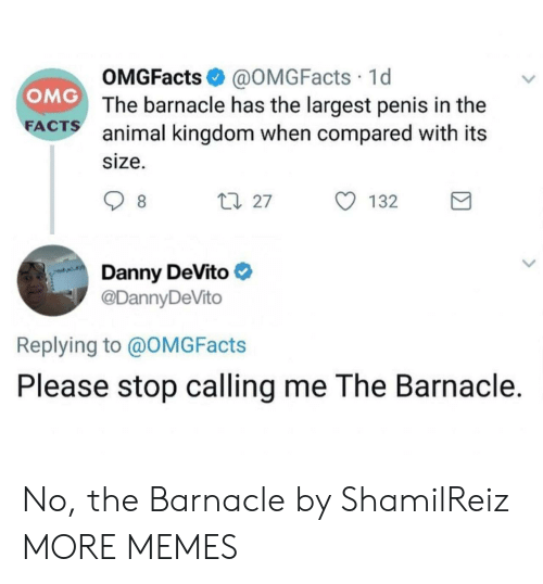 animal kingdom: OMGFacts @OMGFacts 1d  The barnacle has the largest penis in the  animal kingdom when compared with its  size.  OMG  FA  CTS  27  132  Danny DeVito  @DannyDeVito  Replying to @OMGFacts  Please stop calling me The Barnacle. No, the Barnacle by ShamilReiz MORE MEMES