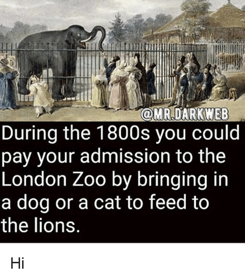 Memes, Lions, and London: OMR DARKWEB  During the 1800s you could  pay your admission to the  London Zoo by bringing in  a dog or a cat to feed to  the lions Hi