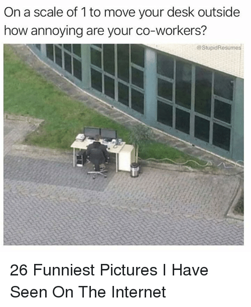 Internet, Desk, and Pictures: On a scale of 1 to move your desk outside  how annoying are your co-workers?  @StupidResumes 26 Funniest Pictures I Have Seen On The Internet