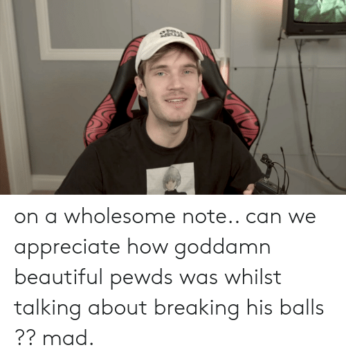 Beautiful, Appreciate, and Mad: on a wholesome note.. can we appreciate how goddamn beautiful pewds was whilst talking about breaking his balls ?? mad.