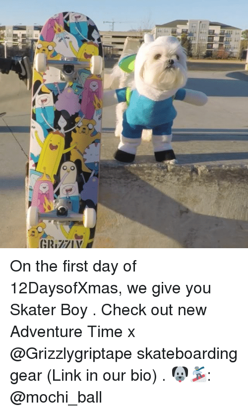 Memes, Adventure Time, and Link: On the first day of 12DaysofXmas, we give you Skater Boy . Check out new Adventure Time x @Grizzlygriptape skateboarding gear (Link in our bio) . 🐶🏂: @mochi_ball