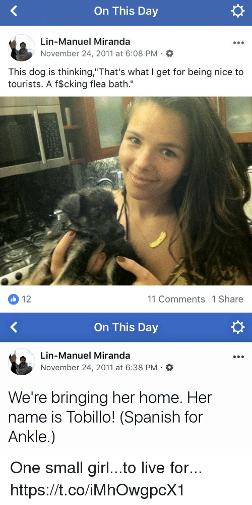"Memes, Spanish, and Girl: On This Day  Lin-Manuel Miranda  November 24, 2011 at 6:08 PM.  This dog is thinking,""That's what I get for being nice to  tourists. A f$cking flea bath.""  12  11 Comments 1 Share   On This Day  Lin-Manuel Miranda  November 24, 2011 at 6:38 PM.O  。  We're bringing her home. Her  name is Tobillo! (Spanish for  Ankle.) One small girl...to live for... https://t.co/iMhOwgpcX1"