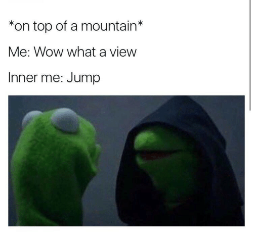 Wow, Top, and What: *on top of a mountain*  Me: Wow what a view  Inner me: Jump
