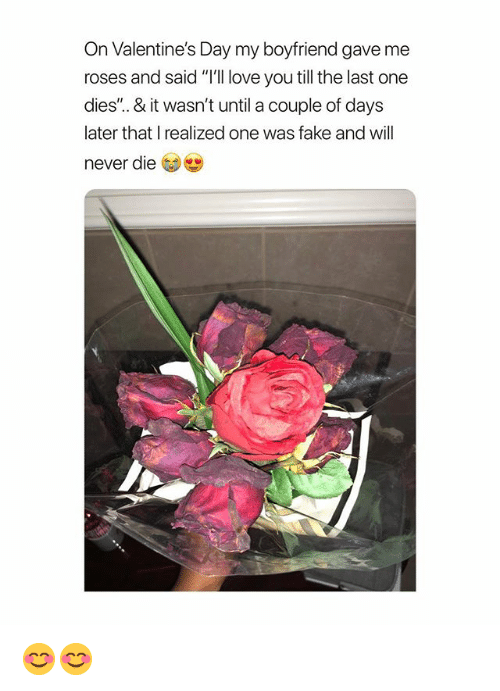 "Fake, Love, and Valentine's Day: On Valentine's Day my boyfriend gave me  roses and said ""T'll love you till the last one  dies'.. & it wasn't until a couple of days  later that I realized one was fake and will  never die 😊😊"