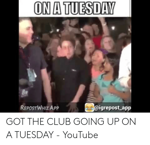 🦅 25+ Best Memes About on a Tuesday Meme | on a Tuesday Memes