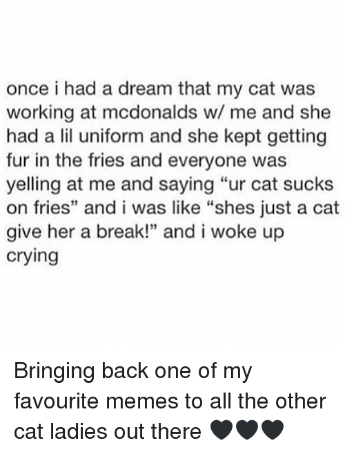 """A Dream, Crying, and McDonalds: once i had a dream that my cat was  working at mcdonalds w/ me and she  had a lil uniform and she kept getting  fur in the fries and everyone was  yelling at me and saying """"ur cat sucks  on fries"""" and i was like """"shes just a cat  give her a break!"""" and i woke up  crying Bringing back one of my favourite memes to all the other cat ladies out there 🖤🖤🖤"""