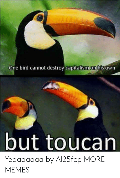 Dank, Memes, and Target: One bird cannot destroy capitalism on his own  but toucan Yeaaaaaaa by Al25fcp MORE MEMES