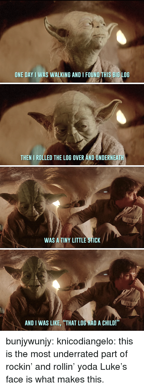 """rollin: ONE DAY I WAS WALKING AND I FOUND THIS BIG LOG   THEN I ROLLED THE LOG OVER AND UNDERNEATH   WAS A TINY LITTLE STICK   AND I WAS LIKE, """"THAT LOG HAD A CHILD!"""" bunjywunjy: knicodiangelo: this is the most underrated part of rockin' and rollin' yoda Luke's face is what makes this."""
