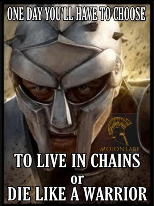 Orli: ONE DAY YOULL HAVE TO CHOOSE  MOLON LABE  TO LIVE IN CHAINS  or  DIE LIKE A WARRIOR