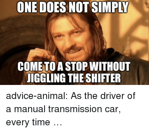 Advice, Tumblr, and Animal: ONE DOES NOT SIMPLY  COMETO A STOP WITHOUT  IGGLING THE SHIFTER advice-animal:  As the driver of a manual transmission car, every time …