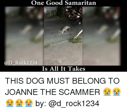 Memes, 🤖, and Good Samaritan: One Good Samaritan  @D Rocki 234  Is All It Takes THIS DOG MUST BELONG TO JOANNE THE SCAMMER 😭😭😭😭😭 by: @d_rock1234