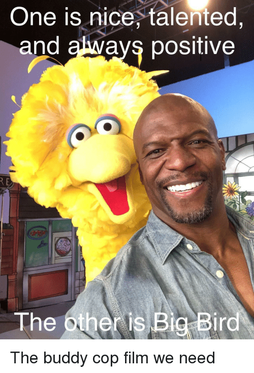 Big Bird: One is nice, talented  and always positive  The other is Big Bird The buddy cop film we need
