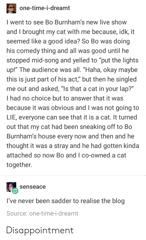 """Blog, Good, and House: one-time-i-dreamt  went to see Bo Burnham's new live show  and I brought my cat with me because, idk, it  seemed like a good idea? So Bo was doing  his comedy thing and all was good until he  stopped mid-song and yelled to """"put the lights  up!"""" The audience was all. """"Haha, okay maybe  this is just part of his act,"""" but then he singled  me out and asked, """"Is that a cat in your lap?""""  I had no choice but to answer that it was  because it was obvious and I was not going to  LIE, everyone can see that it is a cat. It turned  out that my cat had been sneaking off to Bo  Burnham's house every now and then and he  thought it was a stray and he had gotten kinda  attached so now Bo and I co-owned a cat  together.  senseace  I've never been sadder to realise the blog  Source: one-time-i-dreamt Disappointment"""