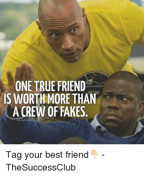Best Friend, Memes, and True: ONE TRUE FRIEND  IS WORTHMORE THAN  A CREW OF FAKES  he Success Cl Tag your best friend👇🏼 - TheSuccessClub