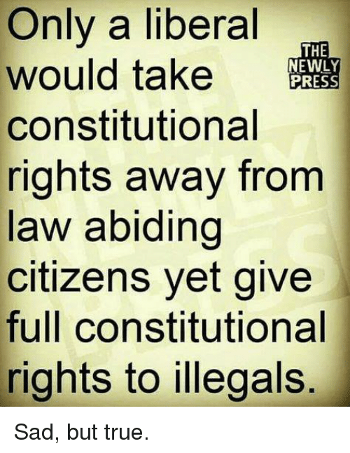 Memes, True, and Sad: Only a liberal  would take RESS  constitutional  rights away from  law abiding  citizens yet give  full constitutional  rights to illegals  THE  EWLY Sad, but true.