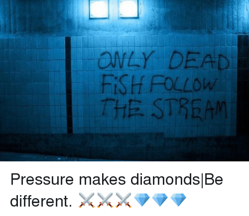 Memes, Pressure, and Fish: ONLY DEAD  FiSH FOLLOw  THE STREAM Pressure makes diamonds|Be different. ⚔️⚔️⚔️💎💎💎