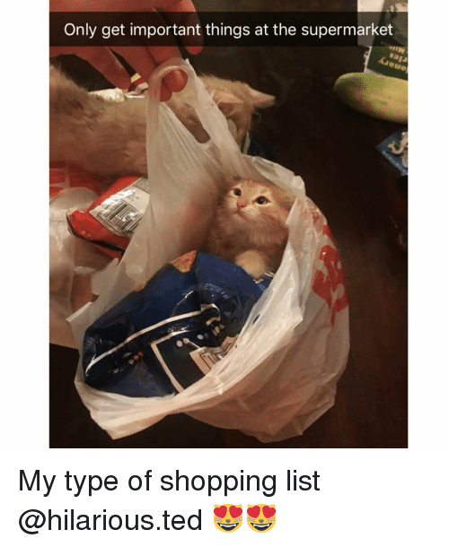 Funny, Shopping, and Ted: Only get important things at the supermarket My type of shopping list @hilarious.ted 😻😻