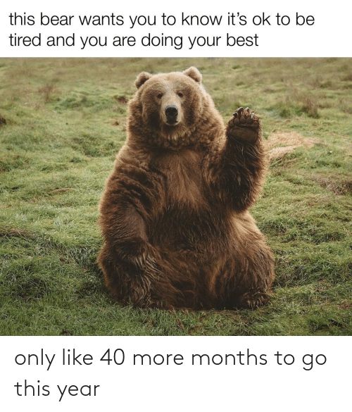 this year: only like 40 more months to go this year
