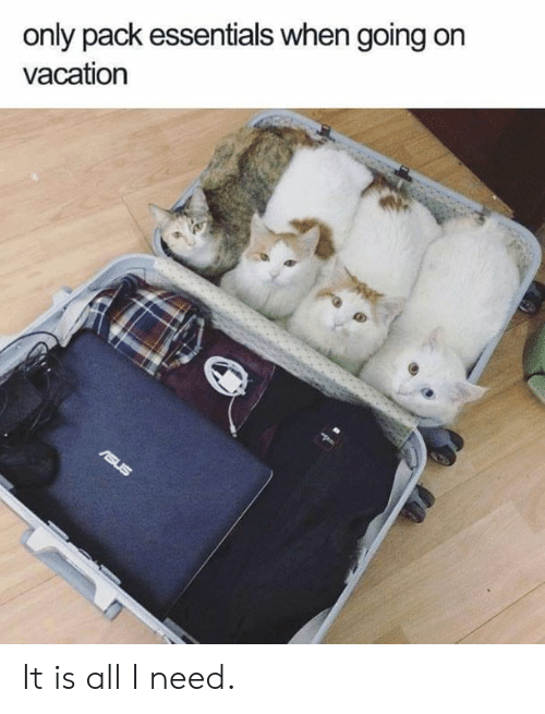 On Vacation: only pack essentials when going on  vacation It is all I need.