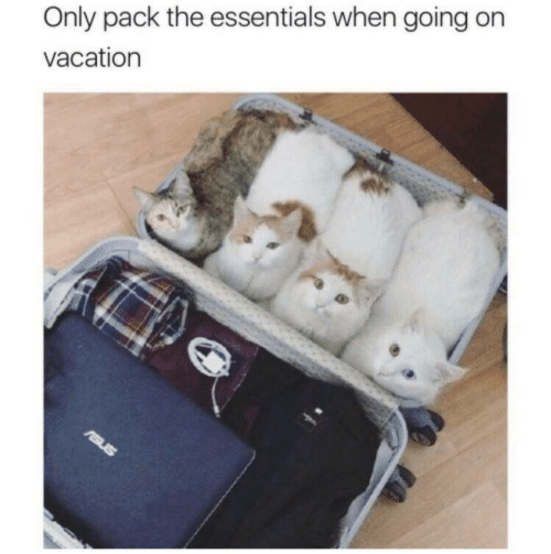 On Vacation: Only pack the essentials when going on  vacation