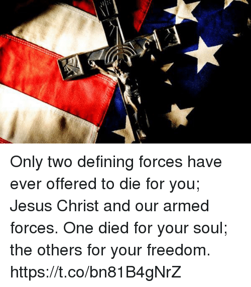 Jesus, Memes, and Freedom: Only two defining forces have ever offered to die for you; Jesus Christ and our armed forces. One died for your soul; the others for your freedom. https://t.co/bn81B4gNrZ