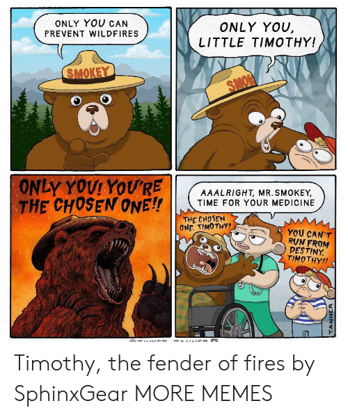destiny: ONLY YOU CAN  ONLY YOU,  LITTLE TIMOTHY!  PREVENT WILDFIRES  SMOKEY  SMON  ONLY YOUI YOU'RE  THE CHOSEN ONE!!  AAALRIGHT, MR. SMOKEY,  TIME FOR YOUR MEDICINE  THE CHOSEN  ONE. TIMOTHY!  YOU CAN'T  RVN FROM  DESTINY  TIMOTHY!  TUl CD TOINNCE  TANNER Timothy, the fender of fires by SphinxGear MORE MEMES