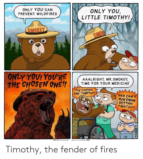 destiny: ONLY YOU CAN  ONLY YOU,  LITTLE TIMOTHY!  PREVENT WILDFIRES  SMOKEY  SMON  ONLY YOUI YOU'RE  THE CHOSEN ONE!!  AAALRIGHT, MR. SMOKEY,  TIME FOR YOUR MEDICINE  THE CHOSEN  ONE. TIMOTHY!  YOU CAN'T  RVN FROM  DESTINY  TIMOTHY!  TUl CD TOINNCE  TANNER Timothy, the fender of fires