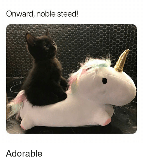 Funny, Adorable, and Steed: Onward, noble steed! Adorable