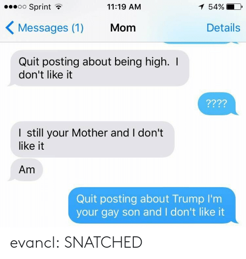 Target, Tumblr, and Blog: oo Sprint  11:19 AM  54%  Messages (1)  Mom  Details  Quit posting about being high. I  don't like it  I still your Mother and I don't  like it  Am  Quit posting about Trump I'nm  your gay son and I don't like it evancl: SNATCHED