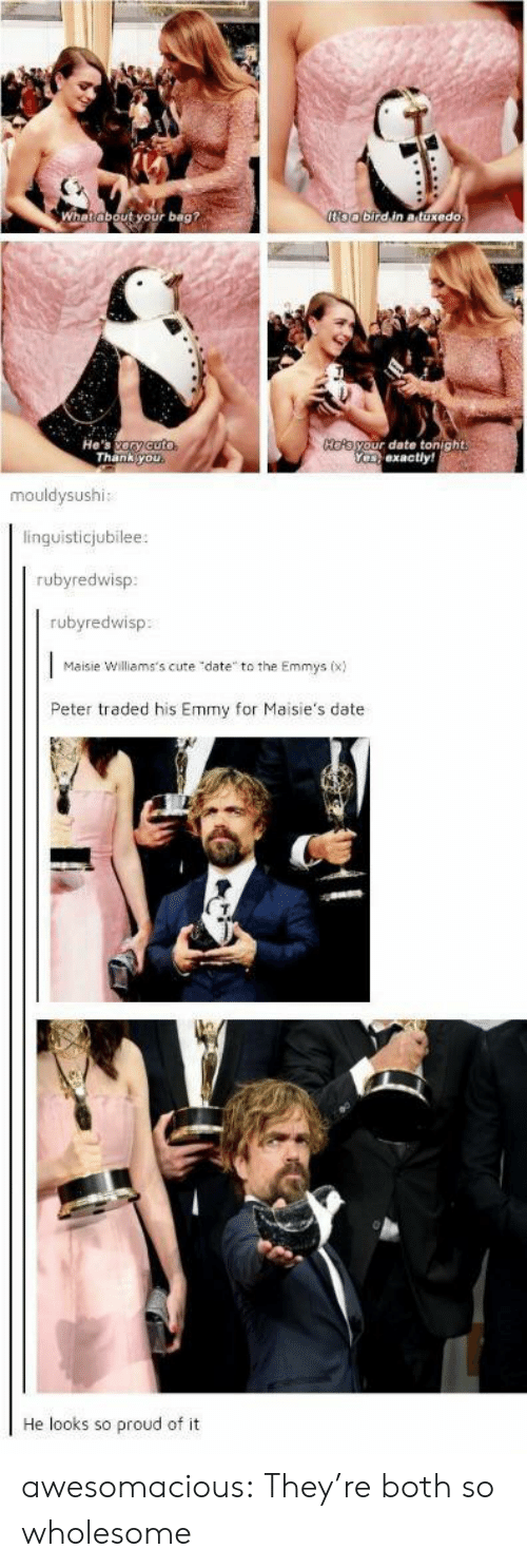 """Cute, Tumblr, and Thank You: oobirdin atuxedo  ut your bag?  He's ary cuto  Thank you  HOAayour date tonight  Yeexactly!  mouldysushi:  linguisticjubilee:  rubyredwisp  rubyredwisp  Maisie Williams's cute """"date to the Emmys (x)  Peter traded his Emmy for Maisie's date  He looks so proud of it awesomacious:  They're both so wholesome"""
