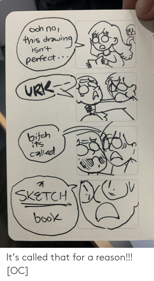 Bitch, Book, and Reason: ooh no,  this drawing  isn't  perfect..  URK  bitch  it's  called  SKETCH  book It's called that for a reason!!! [OC]