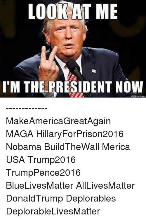 Memes, 🤖, and Merica: OOK  AT ME  I'M THE PRESIDENT NOW ------------- MakeAmericaGreatAgain MAGA HillaryForPrison2016 Nobama BuildTheWall Merica USA Trump2016 TrumpPence2016 BlueLivesMatter AllLivesMatter DonaldTrump Deplorables DeplorableLivesMatter