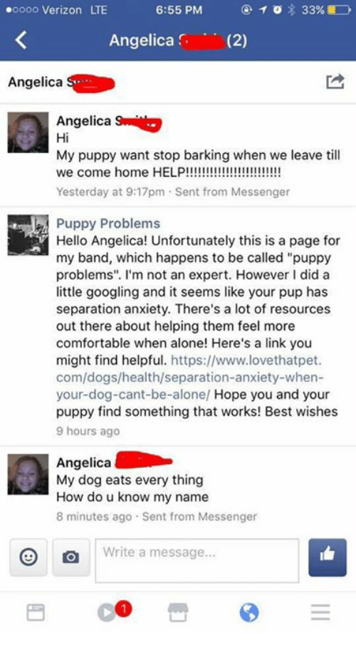 "Being Alone, Comfortable, and Dogs: oooo Verizon LTE  Angelica (2)  Angelica  Angelica  Hi  My puppy want stop barking when we leave till  Yesterday at 9:17pm Sent from Messenger  Puppy Problems  Hello Angelica! Unfortunately this is a page for  my band, which happens to be called ""puppy  problems"". I'm not an expert. However I did a  little googling and it seems like your pup has  separation anxiety. There's a lot of resources  out there about helping them feel more  comfortable when alone! Here's a link you  might find helpful. https://www.lovethatpet  com/dogs/health/separation-anxiety-when-  your-dog-cant-be-alone/ Hope you and your  puppy find something that works! Best wishes  9 hours ago  Angelica  My dog eats every thing  How do u know my name  8 minutes ago Sent from Messenger  Write a message"